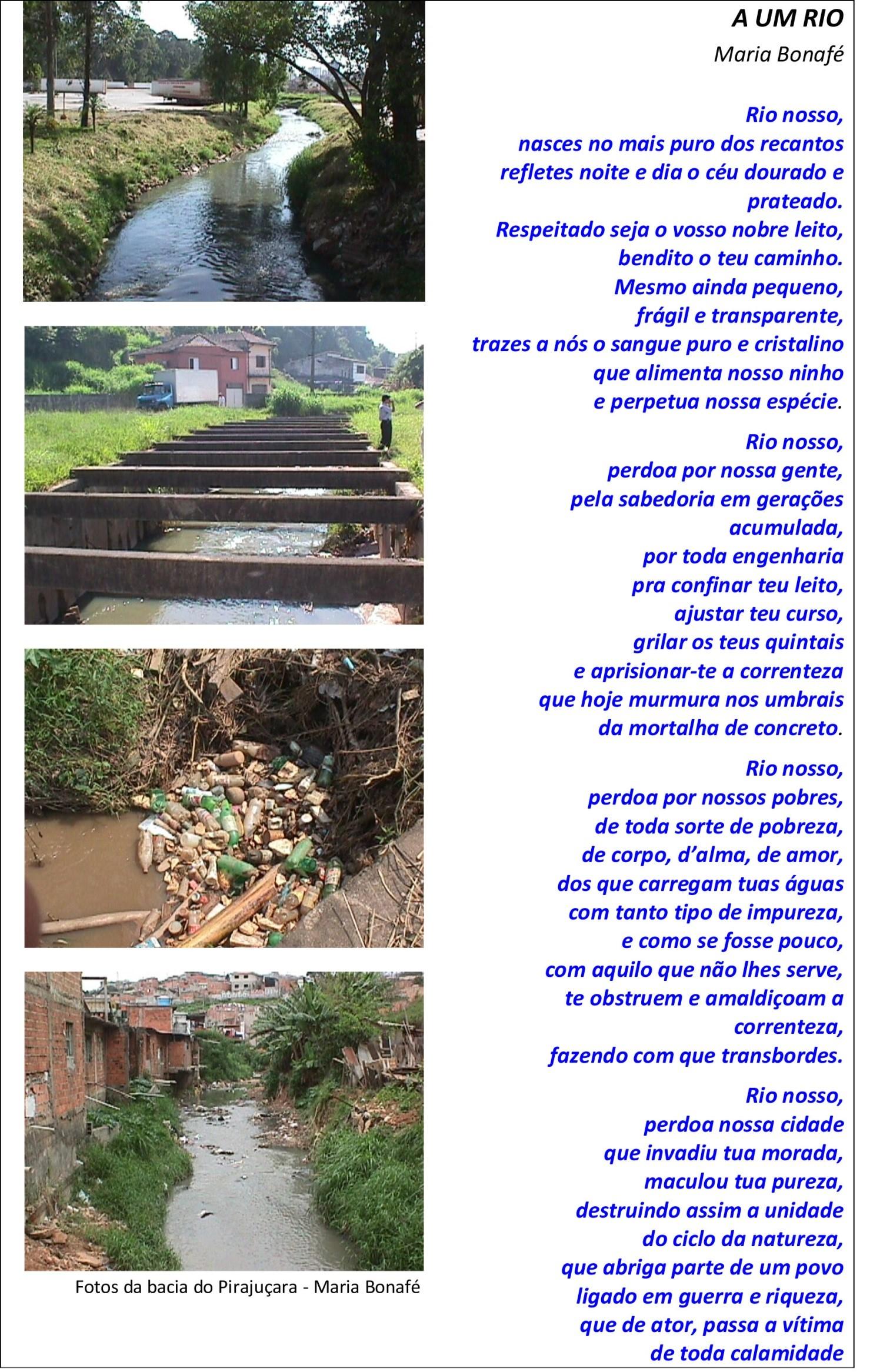Poesia-TESE